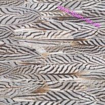 Шпалери Elitis Volare RM81301 - фото