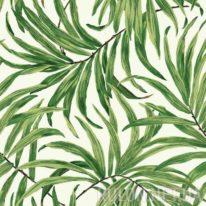 Шпалери York Ashford Tropics AT7050 - фото