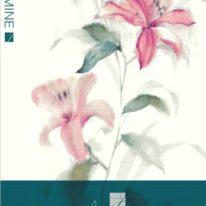 Шпалери Wallquest каталог Jasmine