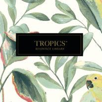 Шпалери York Tropics Resource Library - фото