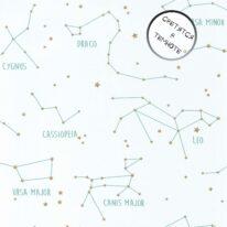 Шпалери Caselio Our Planet 101917125 - фото