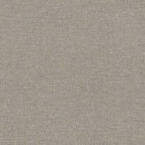 Шпалери Rasch Solene 290560 - фото
