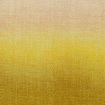 Шпалери Khroma Wall Designs II DG2SHA102 - фото