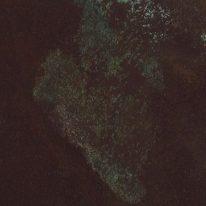 Обои Marburg Horus 58708 - фото