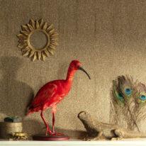 Обои Khroma Cabinet Of Curiosities - фото 6
