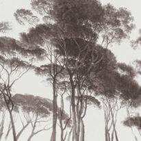 Обои AS Creation History of Art 37651-1 - фото