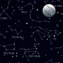 Обои Caselio Our Planet 101916918 - фото
